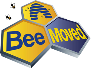 Bee Moved Removals